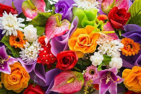 Как выбрать свежие цветы и не дать продавцам себя обмануть?