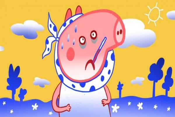 Откуда берётся свинка, чем она опасна и как её лечить