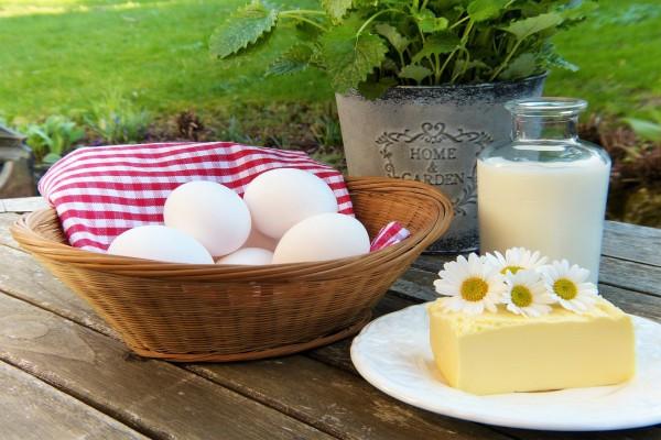 Все, что нужно знать о кальции: положительный эффект, дневная норма и советы по подбору продуктов