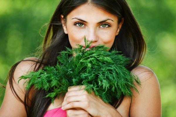 Укроп на балконе: выращиваем зелень самостоятельно