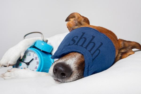 10 советов, как восстановить режим сна