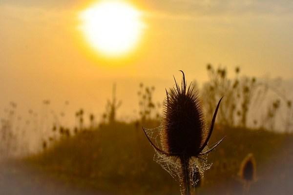 3 утренних ритуала, которые повысят эффективность работы мозга и поднимут настроение