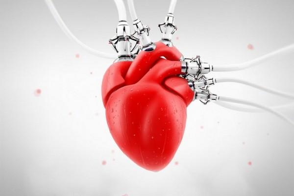 11 способов сохранить сердце здоровым