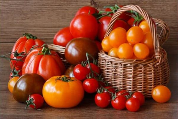 Какой сорт помидор выбрать или лучшие сорта помидор
