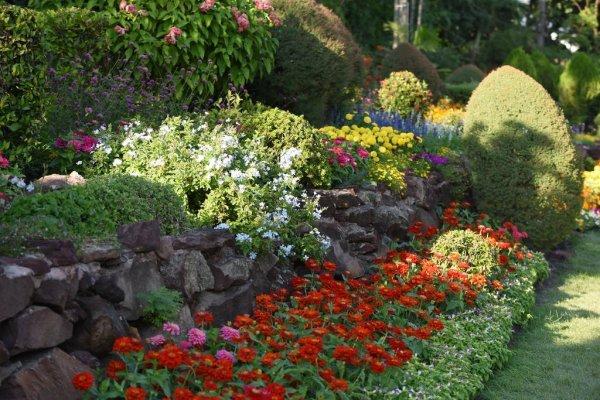 Цветовая схема и гамма сада – какую выбрать и какие растения для нее посадить