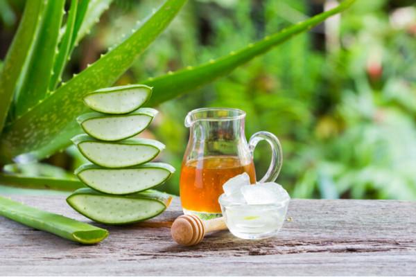 Как приготовить натуральный шампунь из зеленого чая и алоэ