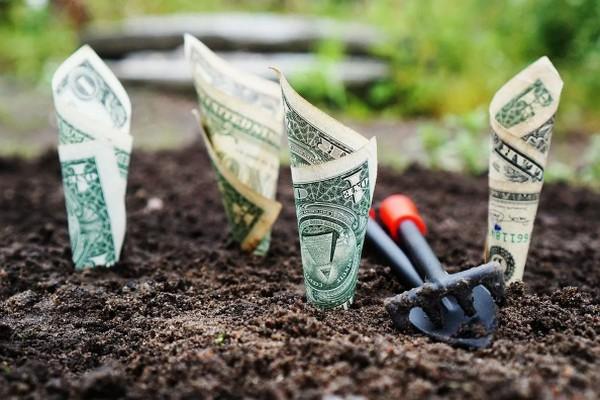 Всего 1 слово может улучшить ваше финансовое положение