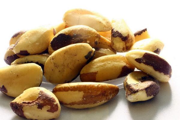 Чем полезны для людей бразильские орехи