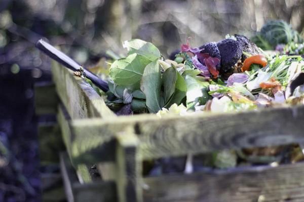 Несколько секретов, чтобы получить быстрый и качественный компост