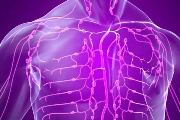 Лучшие советы по очищению лимфатической системы