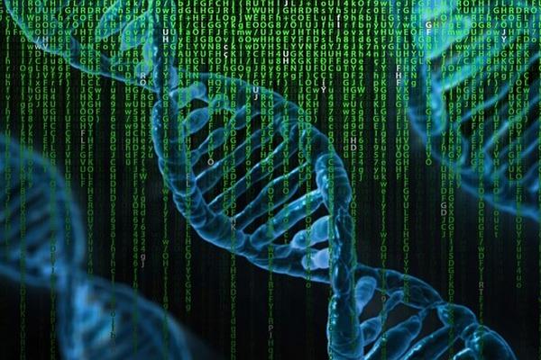 Генетика: как гены влияют на характер и судьбу человека