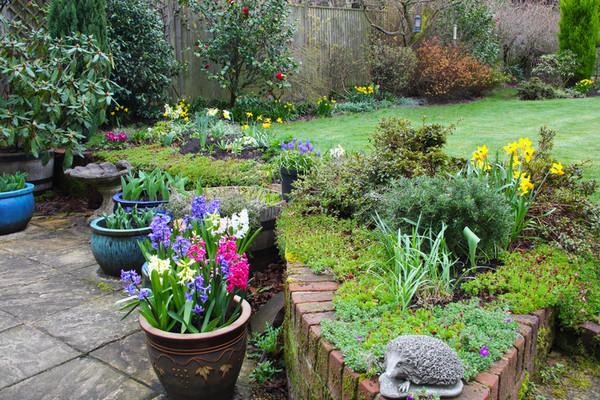 5 типичных ошибок при оформлении сада (и как их избежать)