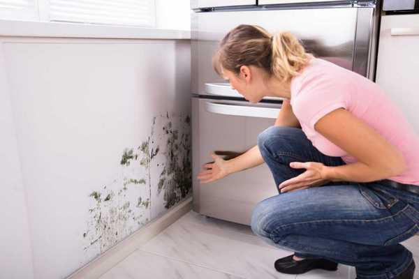 Как избежать чрезмерной влажности в помещении